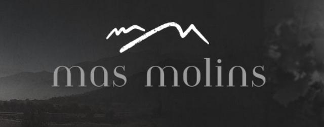 logo-masmolins-2